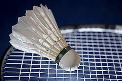 Badminton Ball